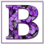 Felicitari cu nume de baieti: Litera B