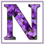 Felicitari cu nume de dragoste: Litera N