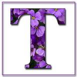 Felicitari cu nume 8 Martie Ziua Femeii: Litera T