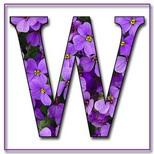 Felicitari cu nume de baieti: Litera W