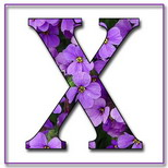 Felicitari cu nume de baieti: Litera X