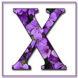 Felicitari cu nume de dragoste: Litera X