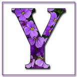 Felicitari cu nume de dragoste: Litera Y