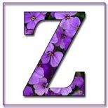 Felicitari cu nume 8 Martie Ziua Femeii: Litera Z