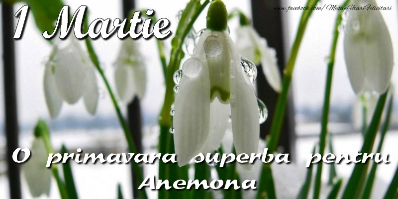 Felicitari de Martisor   O primavara superba pentru Anemona