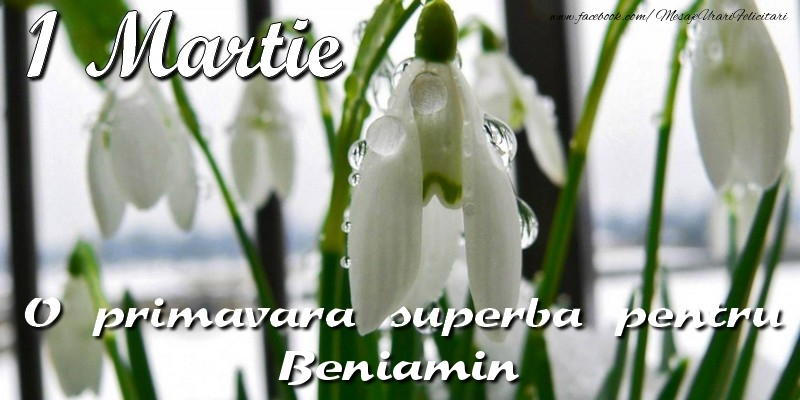 Felicitari de Martisor | O primavara superba pentru Beniamin