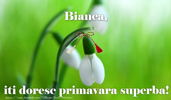Felicitari de Martisor   Bianca iti doresc primavara superba!