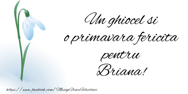 Felicitari de Martisor   Un ghiocel si o primavara fericita pentru Briana!