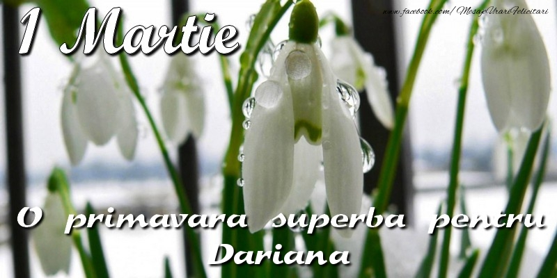 Felicitari de Martisor   O primavara superba pentru Dariana