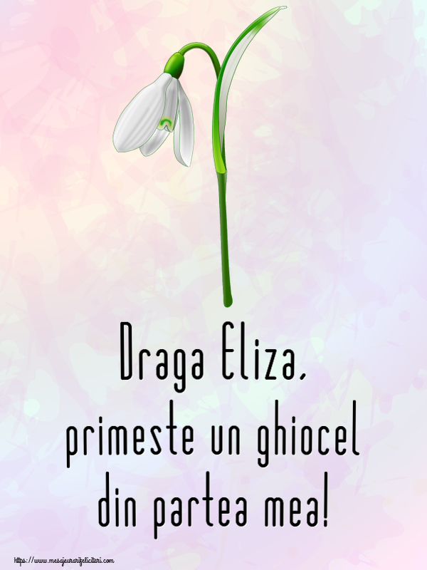 Felicitari de Martisor | Draga Eliza, primeste un ghiocel din partea mea!