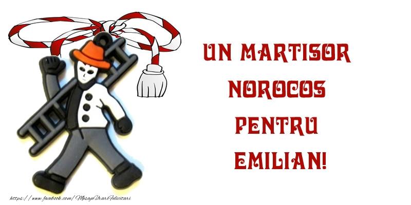 Felicitari de Martisor | Un martisor norocos pentru Emilian!