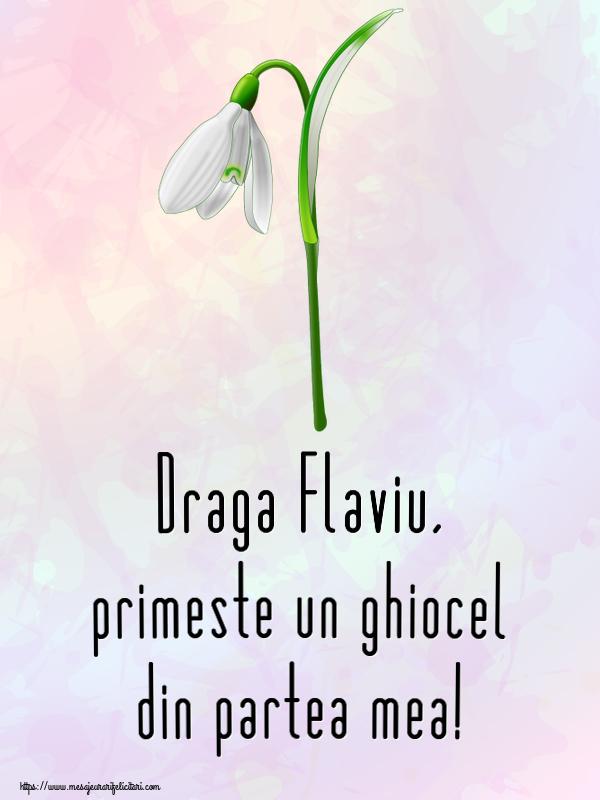 Felicitari de Martisor | Draga Flaviu, primeste un ghiocel din partea mea!