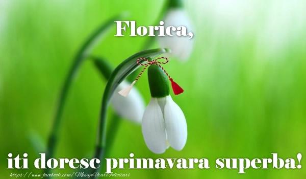 Felicitari de Martisor | Florica iti doresc primavara superba!