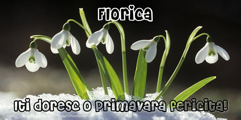 Felicitari de Martisor | Florica Iti doresc o primavara fericita!