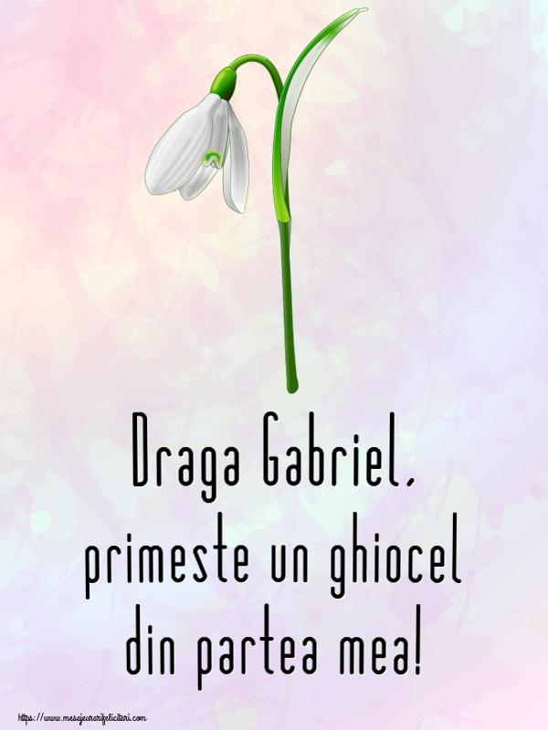 Felicitari de Martisor | Draga Gabriel, primeste un ghiocel din partea mea!