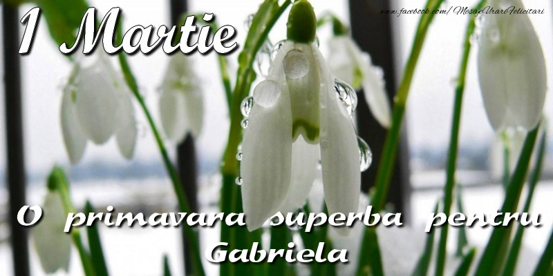 Felicitari de Martisor   O primavara superba pentru Gabriela