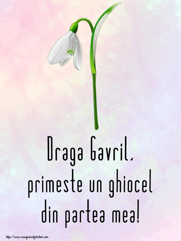 Felicitari de Martisor | Draga Gavril, primeste un ghiocel din partea mea!