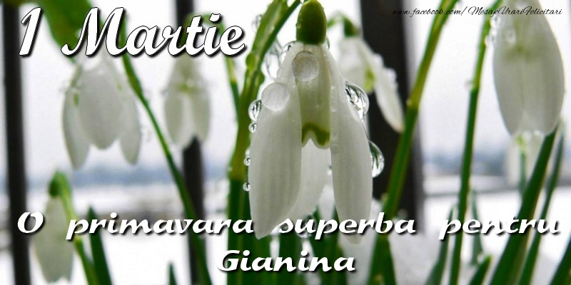 Felicitari de Martisor | O primavara superba pentru Gianina