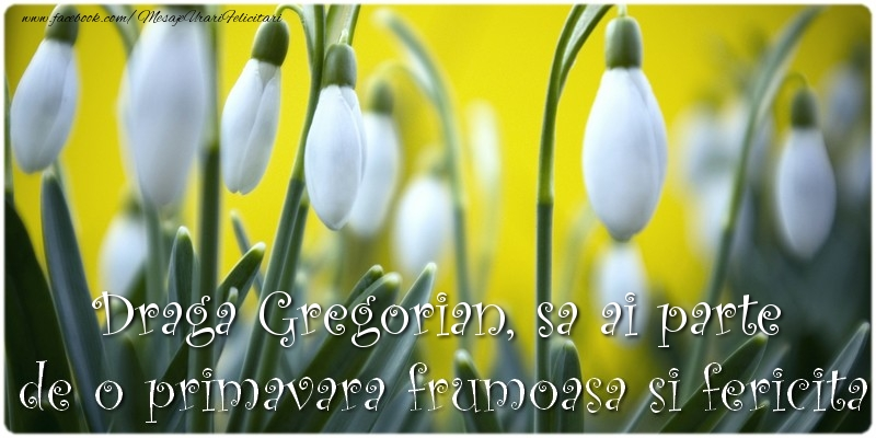 Felicitari de Martisor   Draga Gregorian, sa ai parte de o primavara frumoasa si fericita