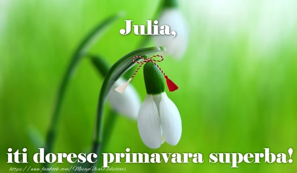Felicitari de Martisor   Julia iti doresc primavara superba!