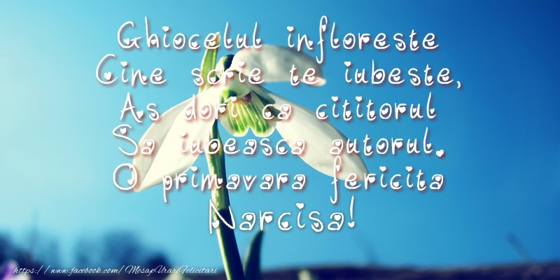 Felicitari de Martisor   Ghiocelul infloreste, Cine scrie te iubeste, As dori ca cititorul Sa iubeasca autorul. O primavara fericita Narcisa!