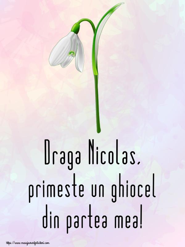 Felicitari de Martisor | Draga Nicolas, primeste un ghiocel din partea mea!