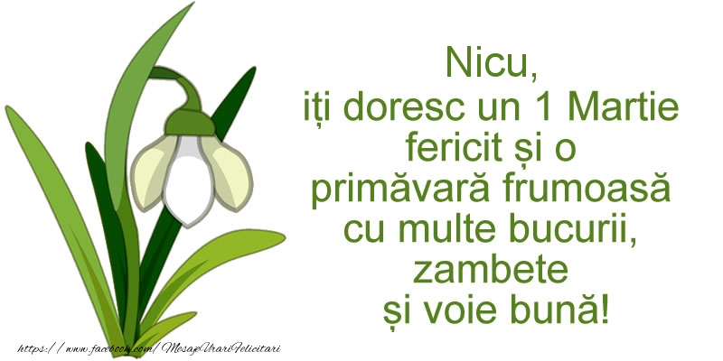 Felicitari de Martisor | Nicu, iti doresc un 1 Martie fericit si o primavara frumoasa cu multe bucurii, zambete si voie buna!