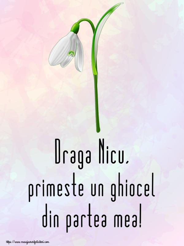 Felicitari de Martisor | Draga Nicu, primeste un ghiocel din partea mea!