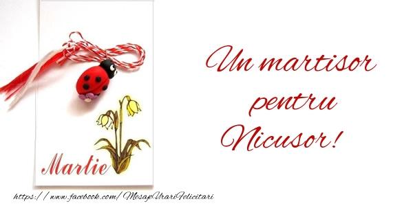 Felicitari de Martisor | Un martisor pentru Nicusor!
