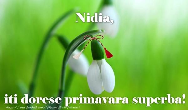Felicitari de Martisor   Nidia iti doresc primavara superba!