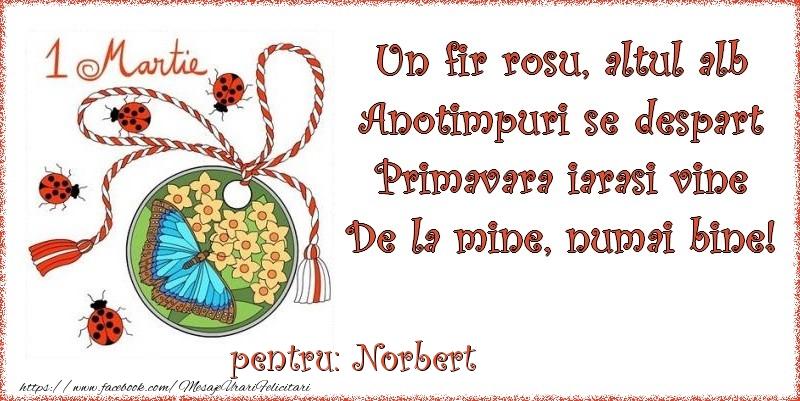 Felicitari de Martisor   Un fir rosu, altul alb ... Pentru Norbert!