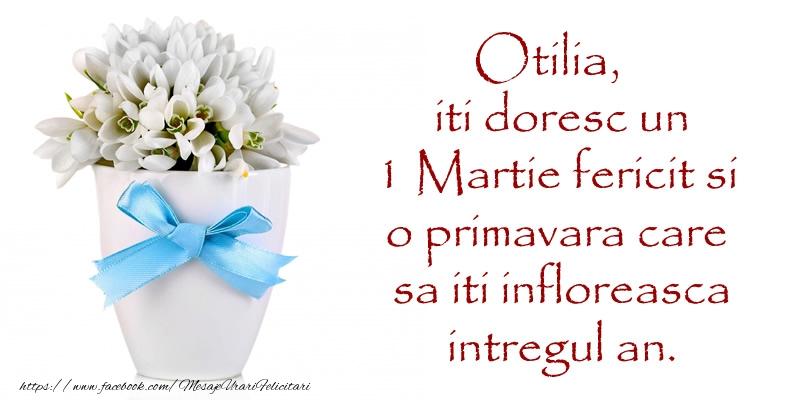 Felicitari de Martisor | Otilia iti doresc un 1 Martie fericit si o primavara care sa iti infloreasca intregul an.