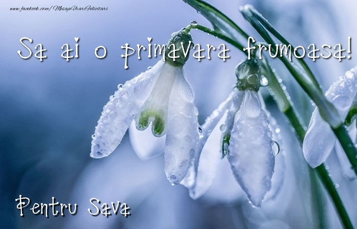 Felicitari de Martisor | Va doresc o primavara minunata Sava