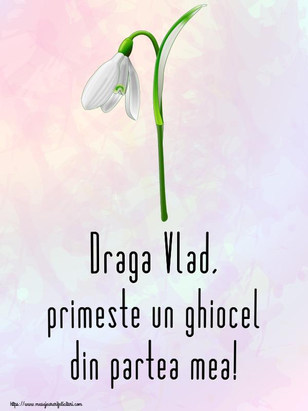 Felicitari de Martisor | Draga Vlad, primeste un ghiocel din partea mea!