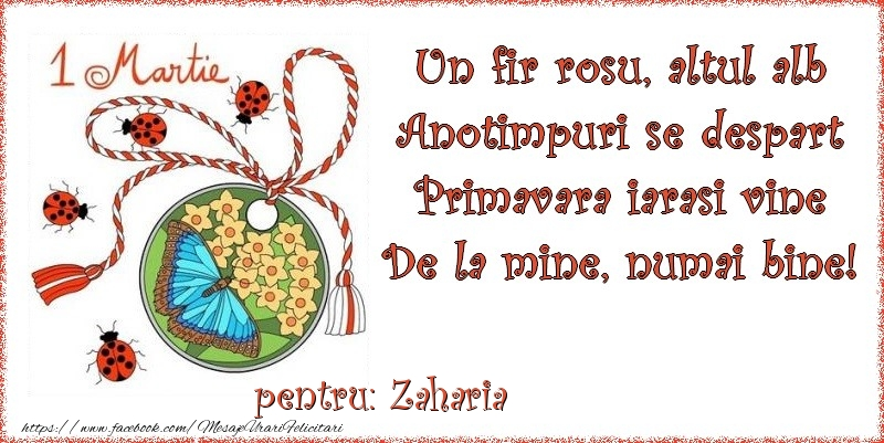 Felicitari de Martisor | Un fir rosu, altul alb ... Pentru Zaharia!