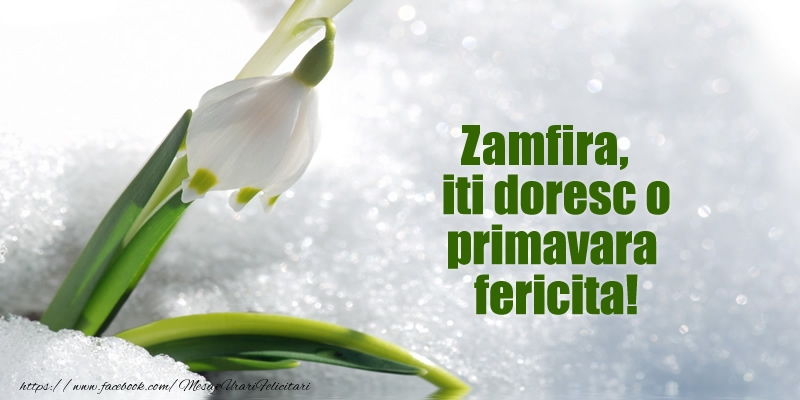 Felicitari de Martisor   Zamfira, iti doresc o primavara fericita!