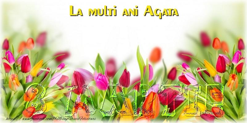 Felicitari 8 Martie Ziua Femeii | La multi ani Agata