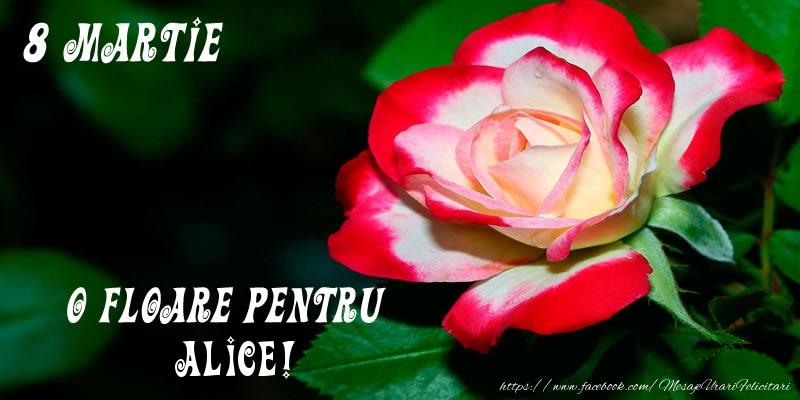 Felicitari 8 Martie Ziua Femeii | O floare pentru Alice!