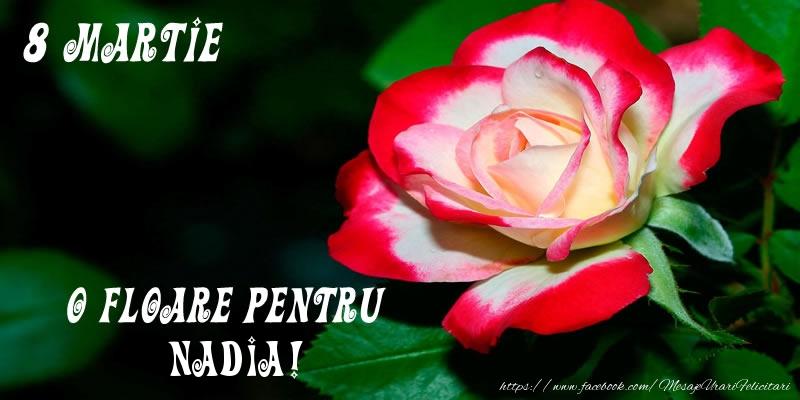 Felicitari 8 Martie Ziua Femeii | O floare pentru Nadia!