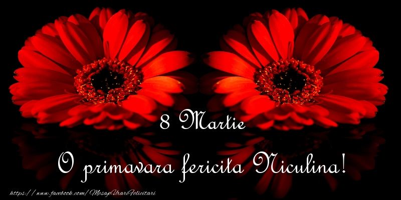 Felicitari 8 Martie Ziua Femeii | O primavara fericita Niculina!
