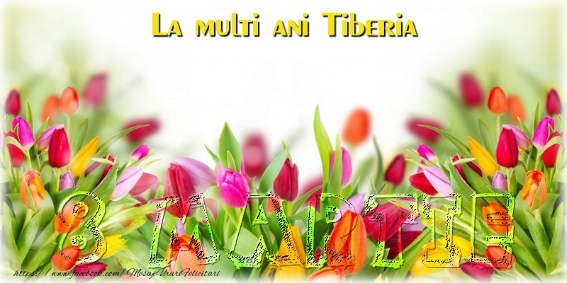 Felicitari 8 Martie Ziua Femeii | La multi ani Tiberia