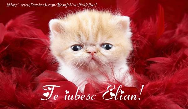 Felicitari de dragoste | Te iubesc Elian!