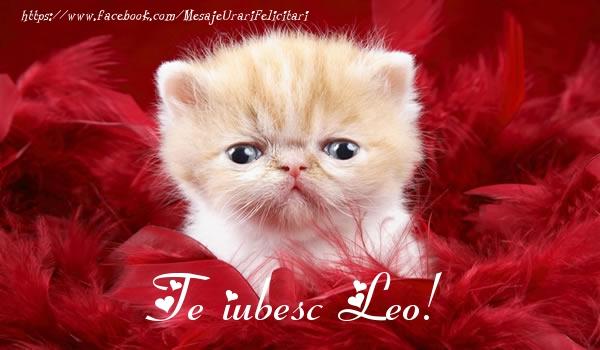 Felicitari de dragoste | Te iubesc Leo!