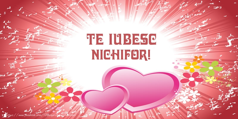 Felicitari de dragoste   Te iubesc Nichifor!
