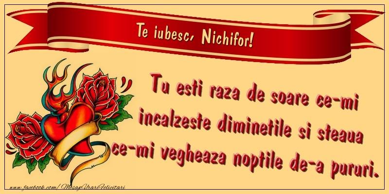 Felicitari de dragoste | Te iubesc, Nichifor. Tu esti raza de soare ce-mi incalzeste diminetile si steaua ce-mi vegheaza noptile de-a pururi.