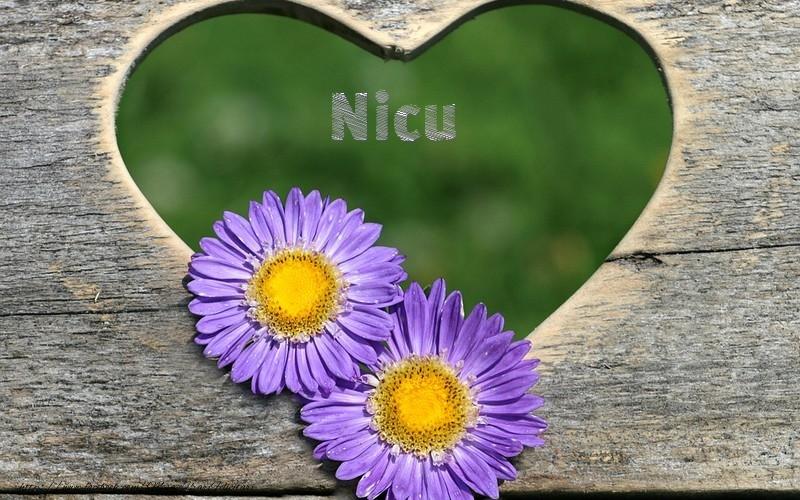 Felicitari de dragoste   Nicu