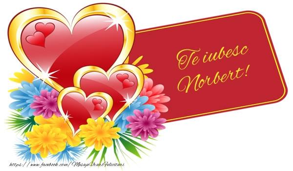 Felicitari de dragoste | Te iubesc Norbert!