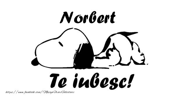 Felicitari de dragoste | Norbert Te iubesc!