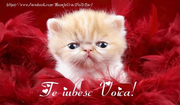 Felicitari de dragoste   Te iubesc Voica!