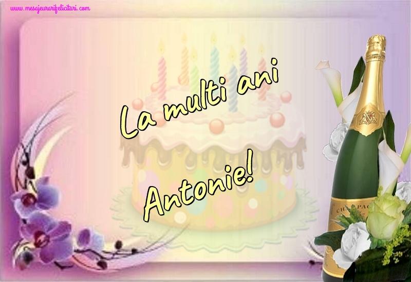 Felicitari de la multi ani | La multi ani Antonie!